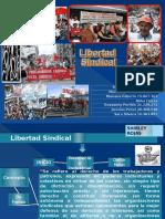 Libertad Sindical Grupo 1