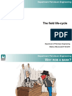 Integrated+Project+-+The+Field+Lifecycle