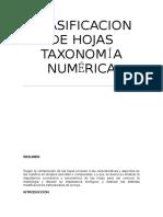 Clasificación de Hojas TAXONOMÍA NUMERICA