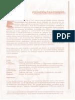 Foliación en archivos.pdf