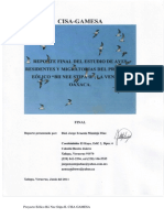 Reporte Final Estudios de Aves (BNS2 Wind Power Loan)