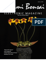 "Origami Bonsai Electronic Magazine ""Beyond the Square"" Vol 2 Iss 3"