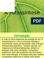 A Fotossíntese