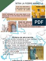 Vacuna Contra Fiebre Amarilla, Varicela y El Virus de La Influenza