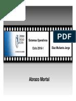 C4_Abrazo_mortal_SSOO.pdf