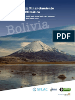 Informe Financiamiento Bolivia