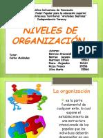 Niveles de Organizacion-1