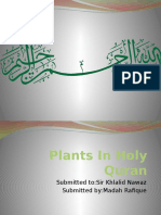 Plants in Holy Quran