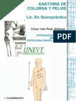 Anatomia de Columna y Pelvis - Real Jimenez, Cesar I.pdf