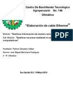 Cable Ethernet Reporte