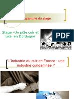 L'Industrie Du Cuir Française Une Industrie en Crise