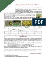 des plantes utiles à l'olivier