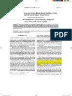 4.-fulltexPDF2