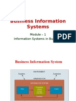 BIS-M1-Information Systems in Business–Afoundation