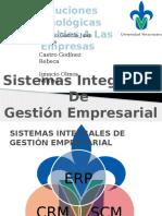 _Sistemas Integrales de Gestion Empresarial