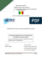 Mémoire BADIANE Cheikh PDF (1)