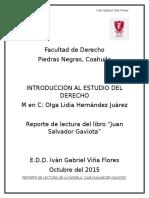 Reporte de Lectura Juan Salvador Gaviota- Iván Viña
