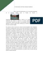 RESEÑA HISTORICA DEL HOSPITAN OSWALDO BARRIOS