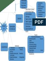 Clasificacion General de Los Parasitos