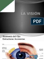 LA VISION.pptx