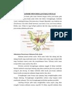 Mekanisme Pencernaan Pada Unggas