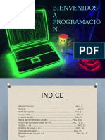 Proyecto final (word)