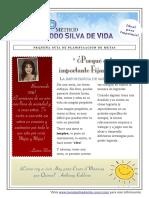 Como Fijar Metas - Guia Planificación de Metas de Laura Silva