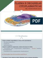 6_Citoplasma e Organelas