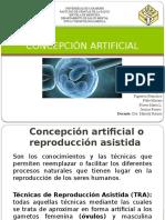 concepción artificial.pptx