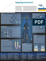 csc_poster.pdf