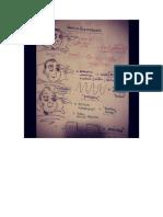 Usmle Notes