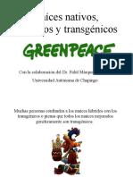 ma-ces-nativos-h-bridos-y-tra.pdf