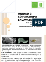 Unidad 3 Supergrupo Excavata_2016a