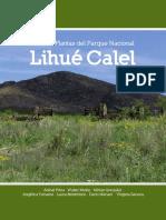 Plantas de Lihue Calel