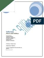 Informe Bhp Billiton