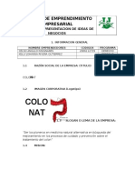 1. Formato de Presentacion de Ideas de Negocios CELSO