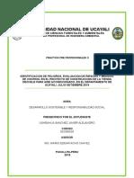 Informe General de Practicas Profesionales 2 FINAL