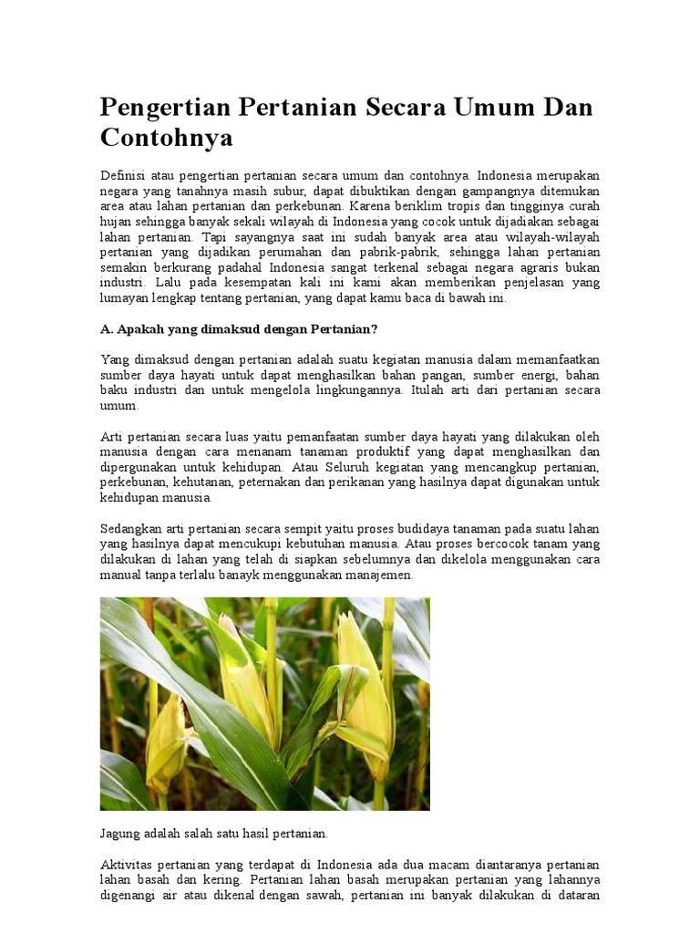 Pengertian Pertanian Secara Umum Dan Contohnya