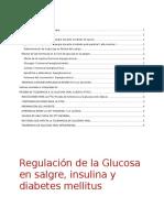 Regulación de La Glucosa en Sangre