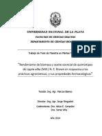 Pampa Oregano 1