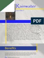 Rainwater Essay Final