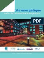 Merit Order Filiere Eco-electrique