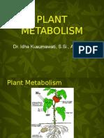 Plant Metabolites UB.ppt Dr
