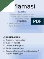 Obat Anti Inflamasi (D-1v)