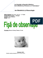 fisha obstetrica