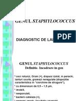 GENUL STAphylococcus