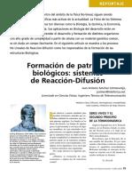Formacion de Patrones Biologicos - Reaccio Difusion - 08a_Rep_Patrones_MN3