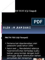PPT CSS