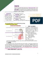 Estructura Funcional y Mecanica Respiratoria 1