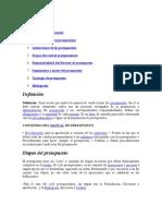 Definición Manual Presupuestario